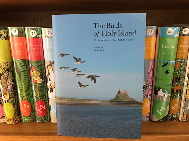 the-birds-of-holy-island-2016