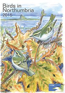 bin-cover-2015